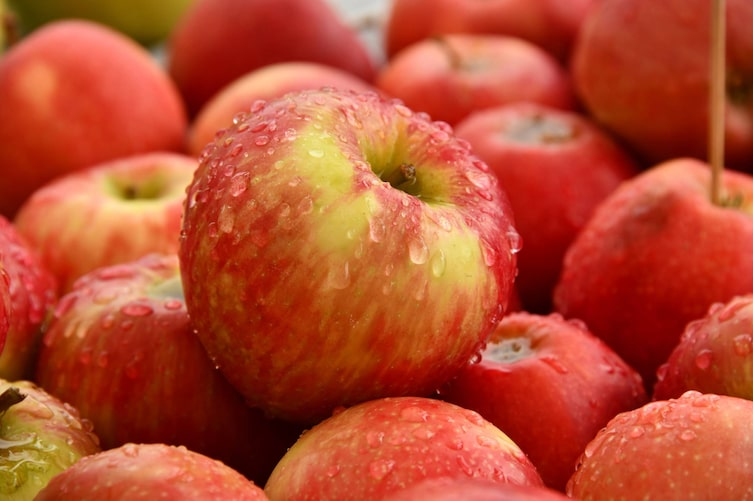 Äpfel von Frutura
