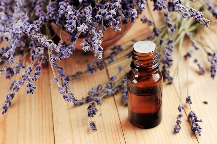 Lavendel-Deocreme zum Selbermachen (Bild: Getty Images)