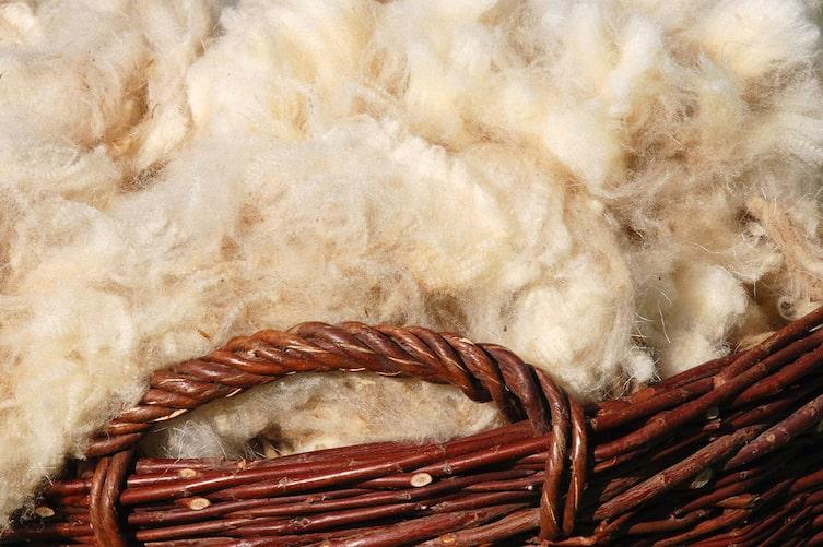Warum Wolle besser wärmt als Synthetik (Foto: iStock.com)