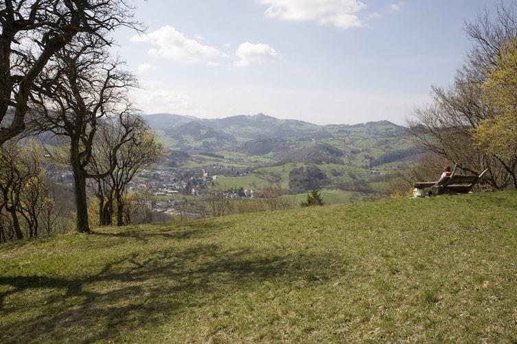 Die Hügel des Pielachtals (Bild: Kerstin Anders)