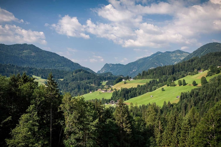 Tirol, Wandern, Schmetterlinge, Brandenbergtal