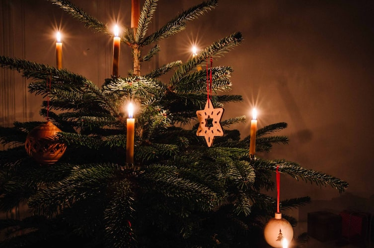 Der erste Christbaum bei den Waldbauern - eine Weihnachtsgeschichte von Peter Rosegger (Foto: Doris Himmelbauer)