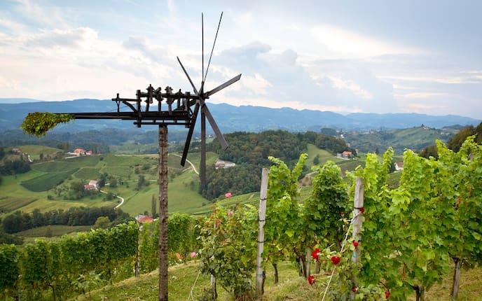 Brauchtum, Klapotetz, Wein