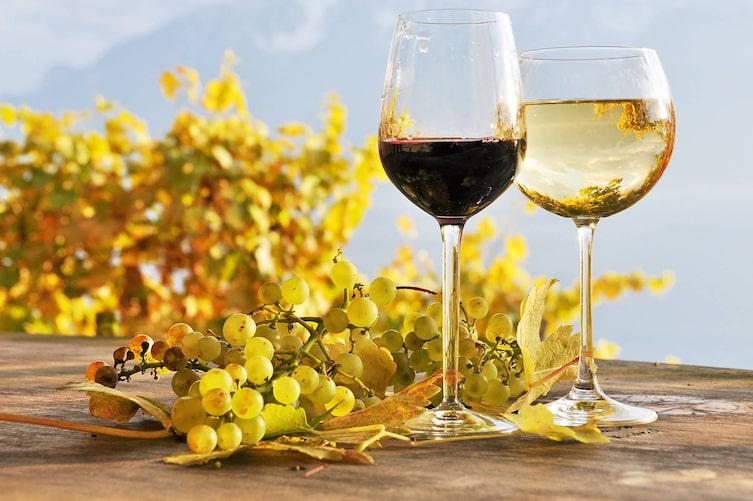 Weinglaskunde (BIld: Getty Images)