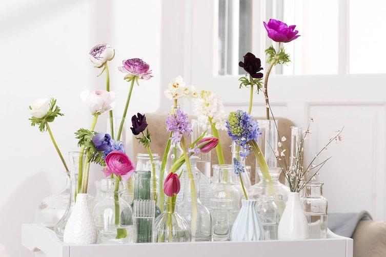 Frühlingsblumen im Glas, kleine Vasen, Glasvasen, Dekoidee, Dekotipp