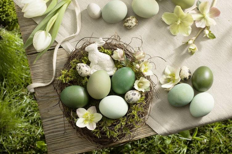 Ideen für Osternester: Grüne Eier (Bild: Eisenhut & Mayer)