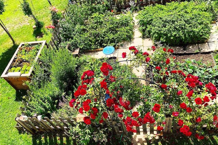 Bauerngarten, Garten, Rosenbogen, Bauerngarten anlegen