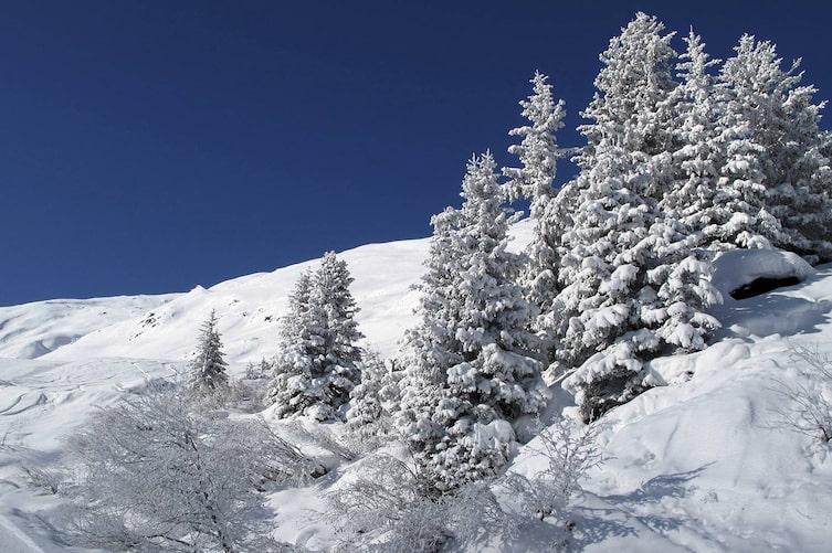 Schneelandschaft im Pitztal (Bild: Luana Baumann-Fonseca)