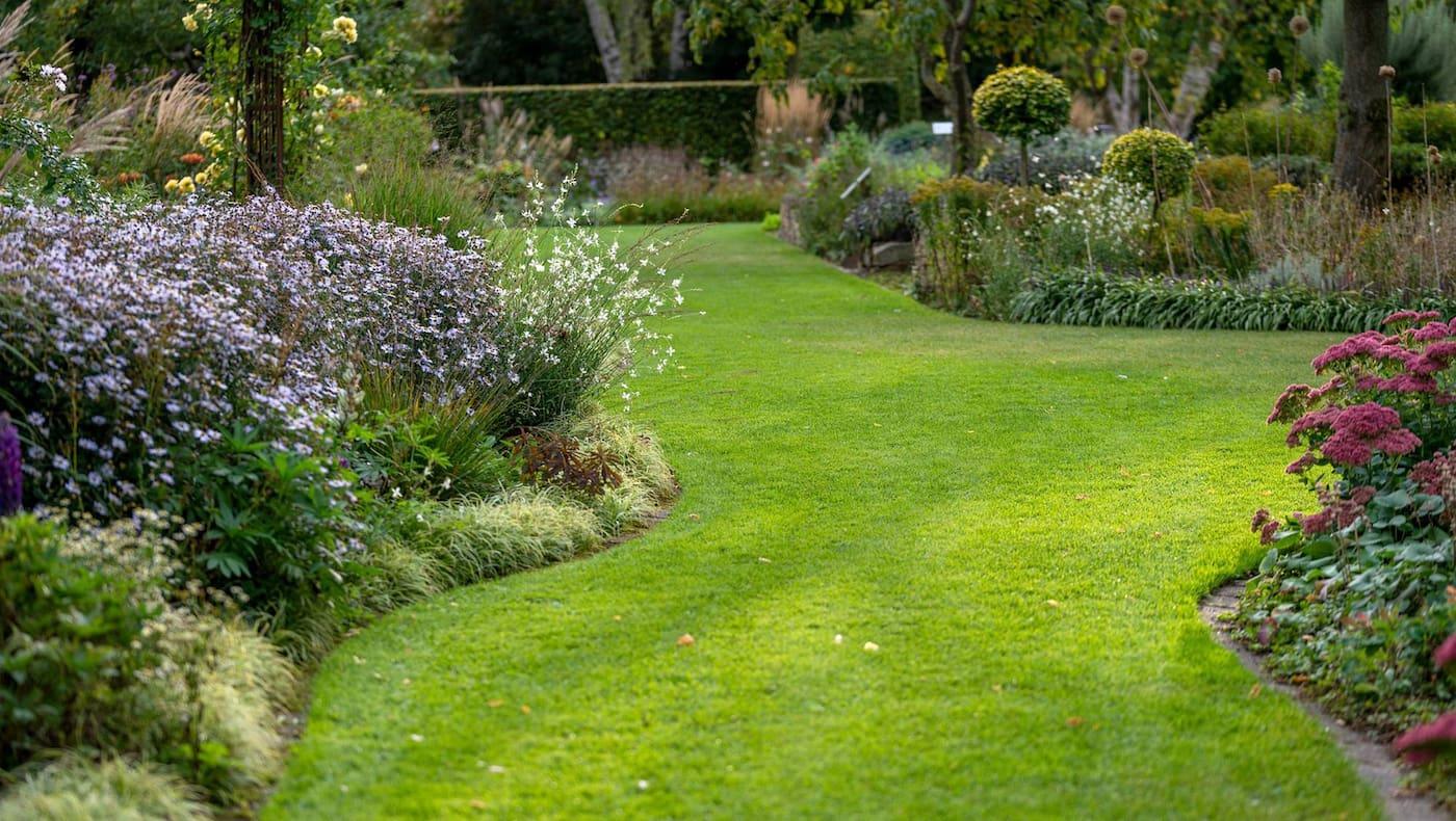 Garten, Rasen, Pflege, mähen