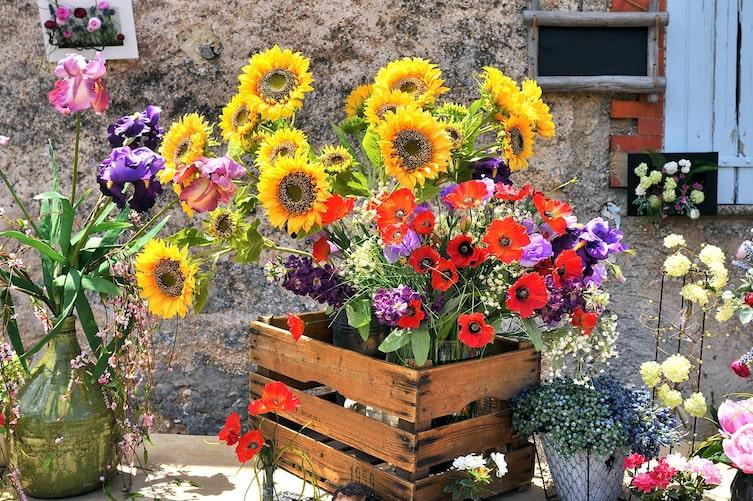 Sonneblumen und Mohnblumen der Vase (Bild: iStock