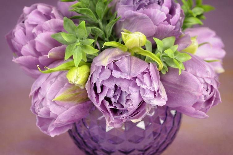 Pfingstrosen in der Vase (Bild: Mauritius Images)