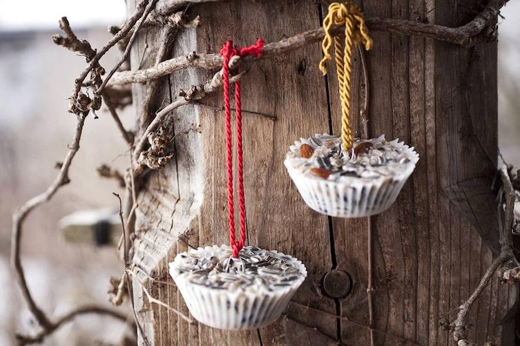 Vogelfutter selber herstellen: Körndl-Torten (Foto: Magdalena Lepka)