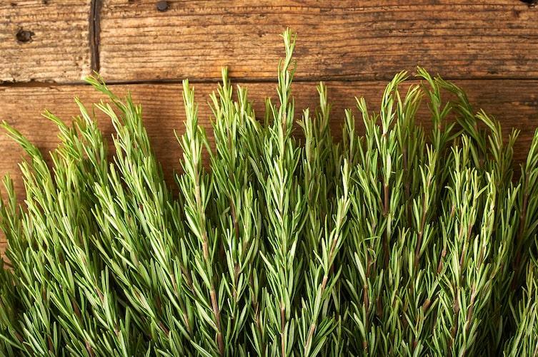 Rosmarin, Kräuter, Holzbrett, Pflanze, grün, Küchenkräuter