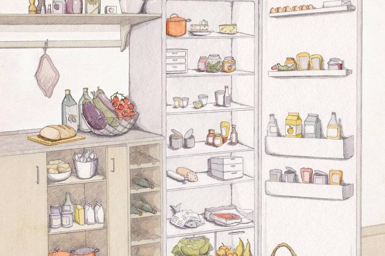 Kühlschrank richtig einfüllen, Kühlschrank sortieren, was gehört wo in den Kühlschrank, Kühlzonen im Kühlschrank