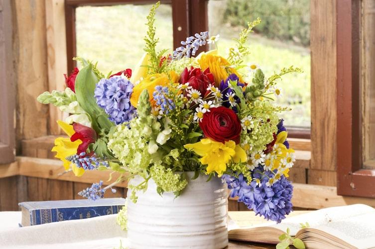 Blumen, Schnittblumen, Pflege
