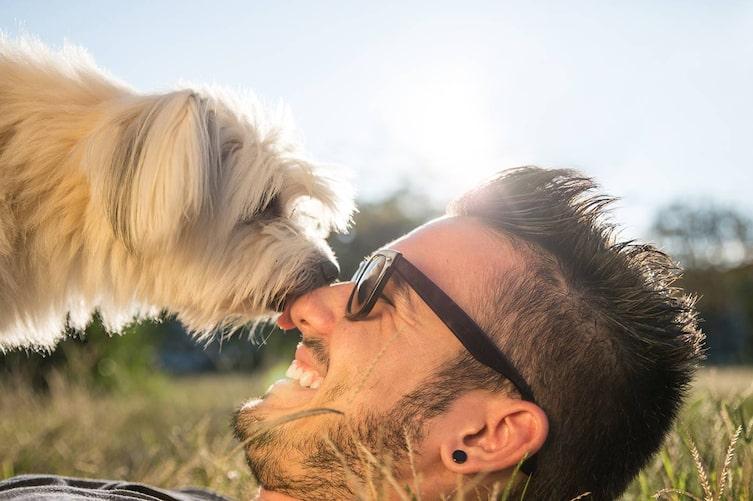 Was es wirklich bedeutet, wenn Hunde Menschen abschlecken. (Bild: iStock)