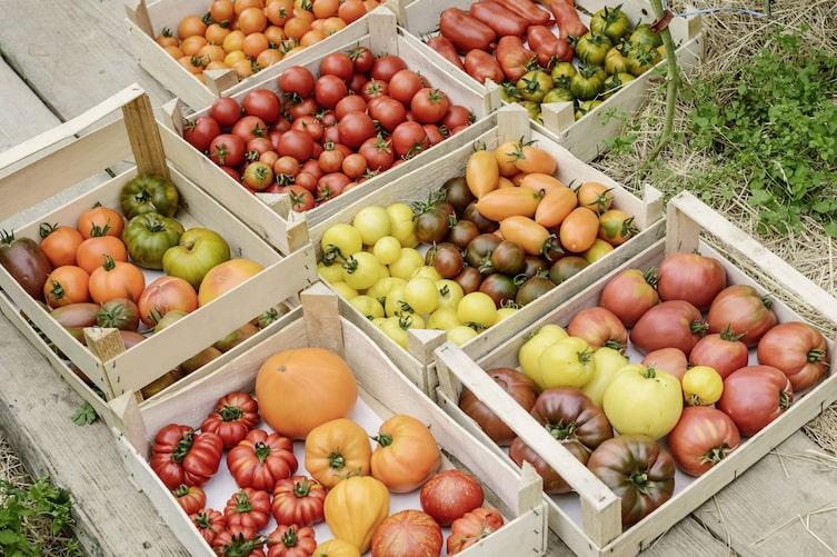 Bauernladen, Österreich, Regional essen, regionales Essen, Lebensmittel vom Bauern