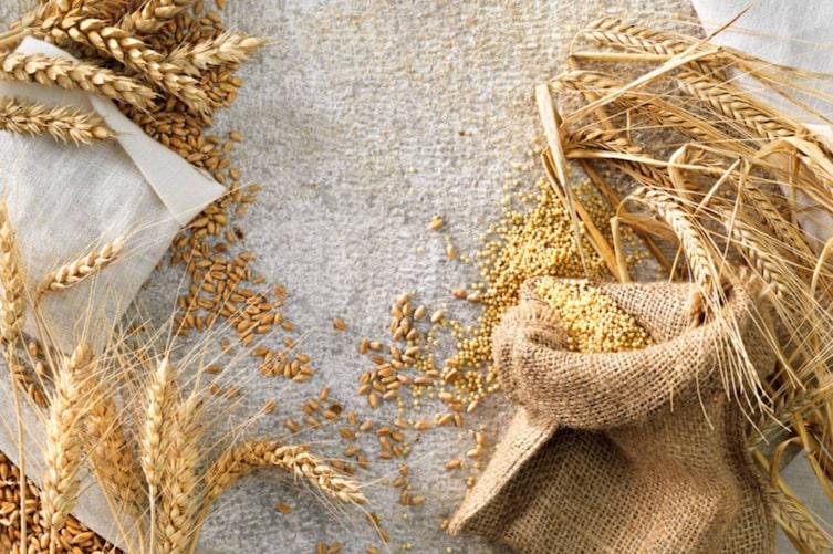 Mehlkunde: Getreidesorten