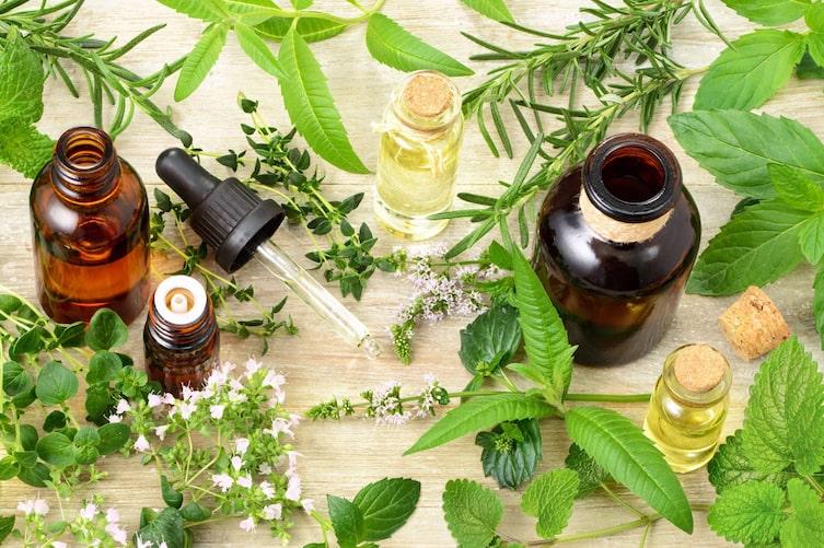 Kräuter und ihre ätherischen Öle (Bild: Getty Images)