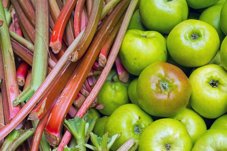 Rhabarber und Äpfel (Bild: Getty Images)
