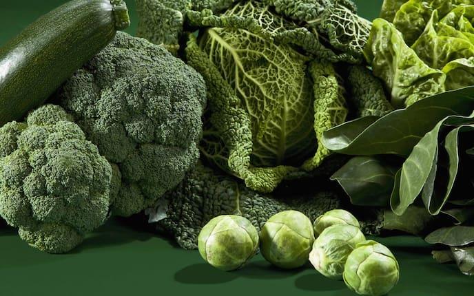 Grünkohl, Rosenkohl, Kohlsprossen, Brokkolo, Zucchini, Superfood, gesunde Lebensmittel