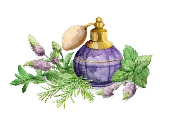 Naturapotheke, natürlich schön, Erfrischungsspray, Rosmarin, Minze