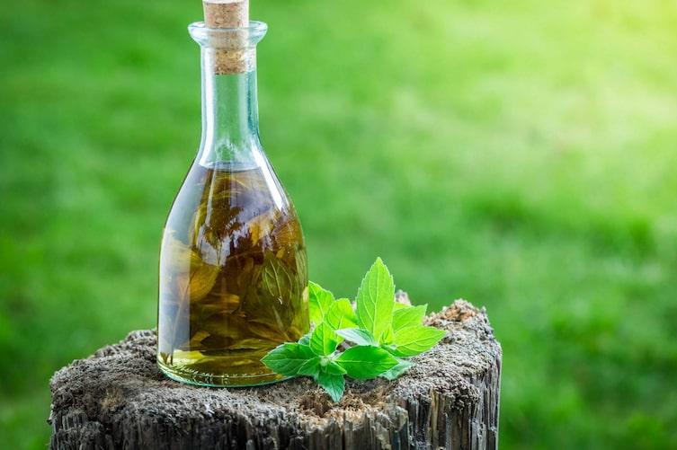 Minzöl in einer Glasflasche (Bild: Getty Images)