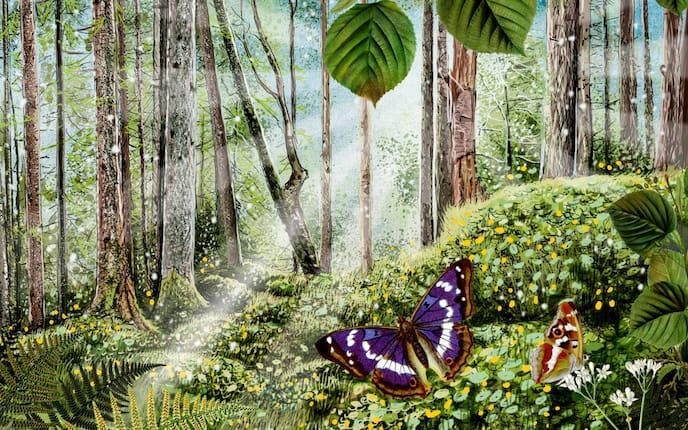 Der heilsame Duft des Waldes (Illustration: Andreas Posselt)