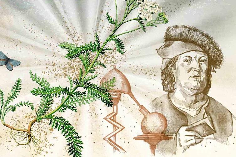 Das alte Wissen des Paracelsus (Illustration: Andreas Posselt)