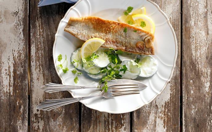 Rezept knusprige Saiblingsfilets mit Rahmgurkensalat (Bild: Eisenhut & Mayer)