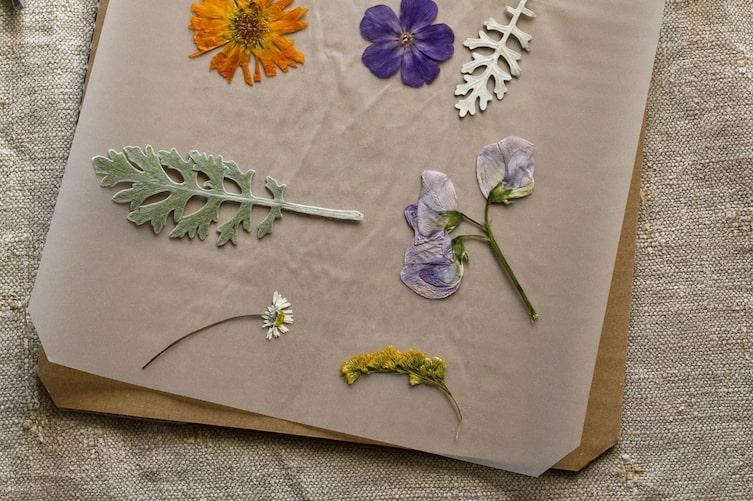 Blumenpresse selber bauen (Bild: Michaela Gabler)