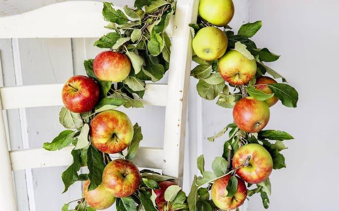 Deko-Kranz mit Äpfeln (Bild: Michaela Gabler)
