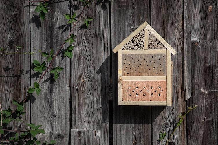 Nistkasten für Wildbienen (Bild: Michaela Gabler)