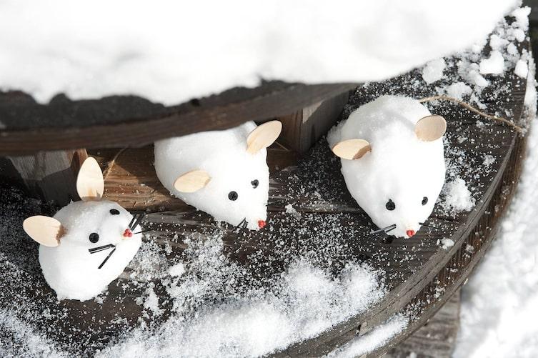 Tiere aus Schnee formen: Mäuse (Bild: Katharina Gossow)