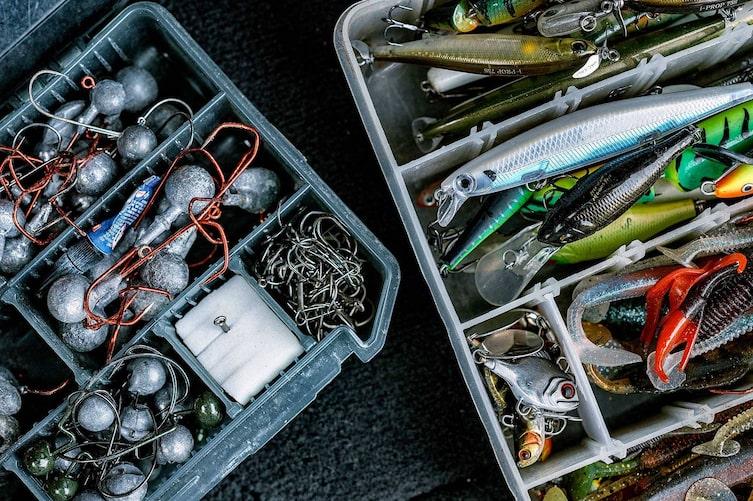 Fischen, Donau, Köder, Gummifische, Wobbler, Raubfische fangen