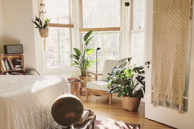 Pflanzen, guter Schlaf, Schlafzimmer