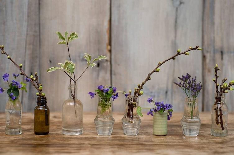 Wohnen, Deko, Veilchen, Vasen