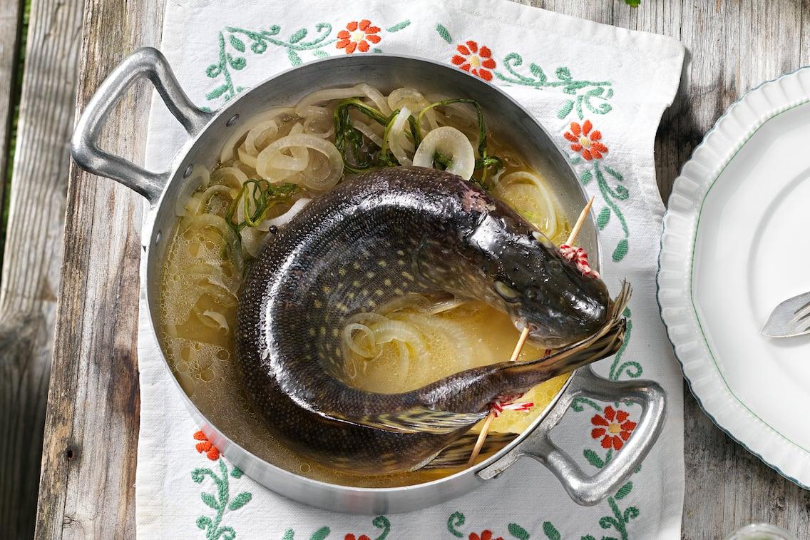 Brezenhecht, Hecht, Fisch, Fischrezept, Servus Rezept