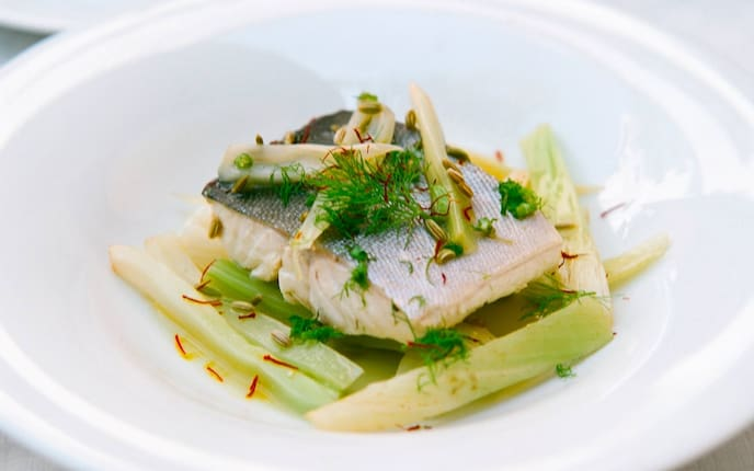 Fischfilet, Fisch, Fenchel, Dill, Servus Rezept