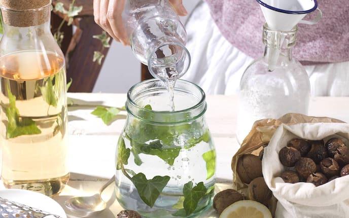 Geschirrspülmittel, Efeu, selbermachen, Rezept, Haushalt