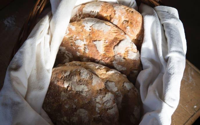 Brot, würziges Bio-Vollkornbrot, Bio-Brot, Bio