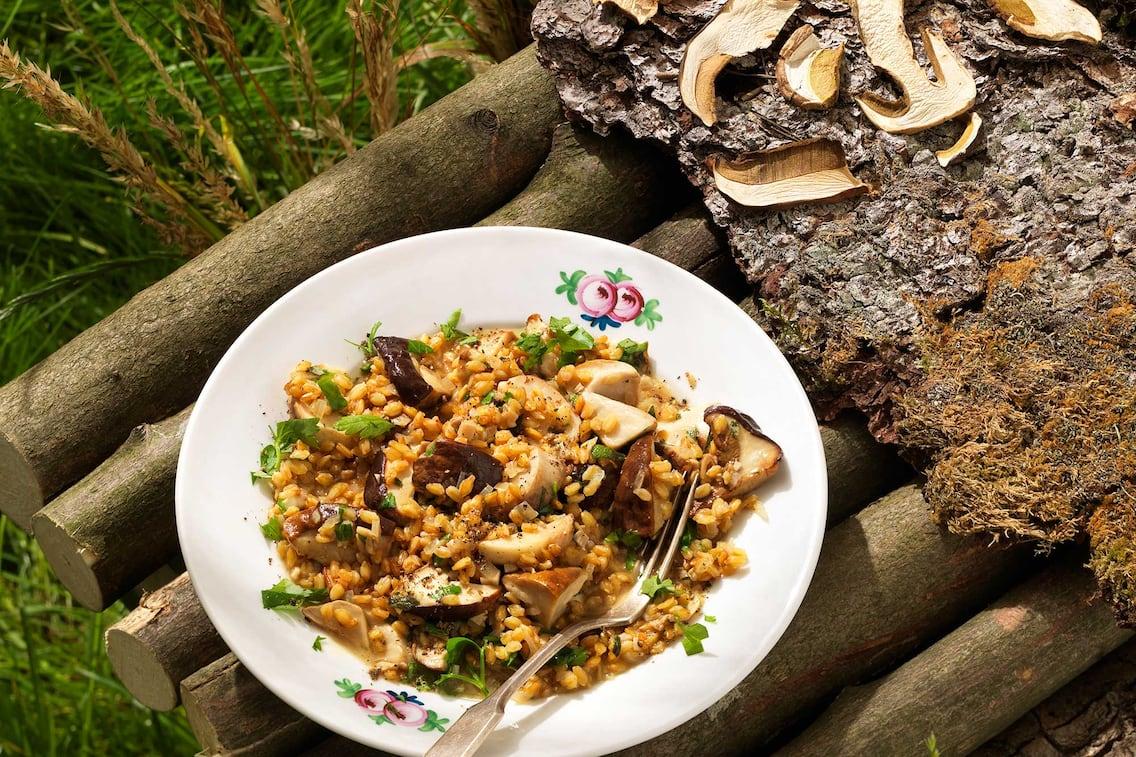 Einkorn mit Steinpilzen, Steinpilz Rezept, Einkorn, Pilze, Schwammerlrezept, Servus Rezept
