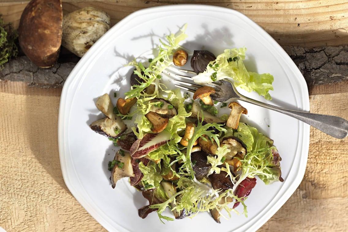 Salat, Pilze, Schalotten, Rezept