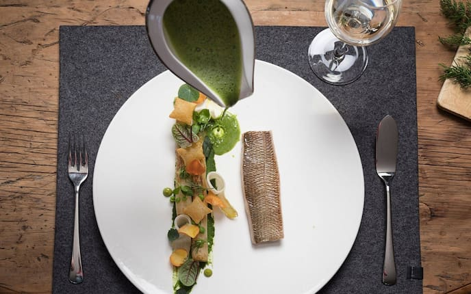 Fischfilet, Kräutersauce, Kräuter, Fisch, Vorspeise, Servus Rezept